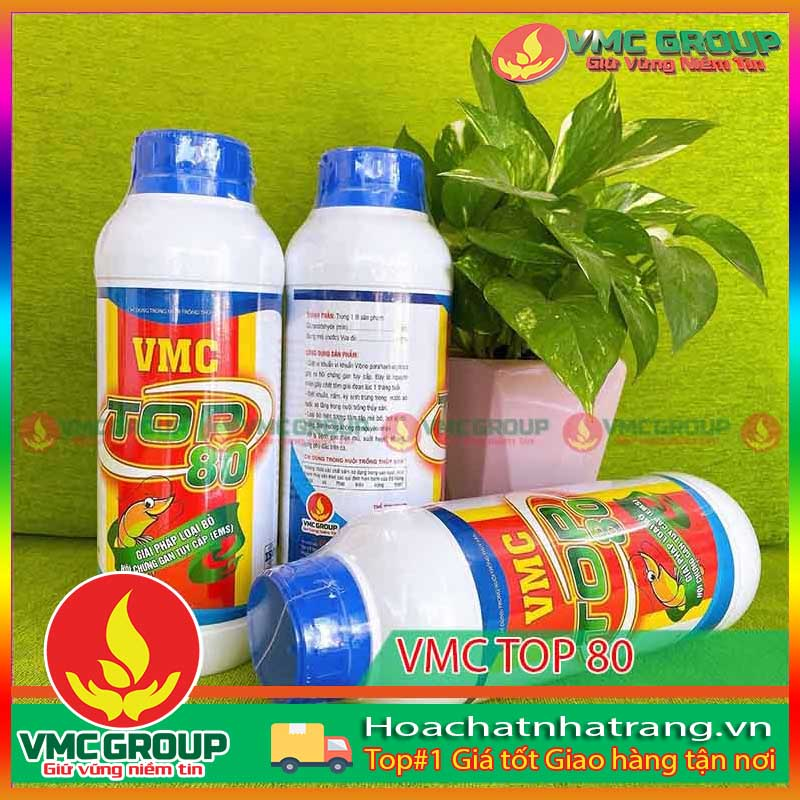 vmc-top-80-giai-phap-loai-bo-hoi-chung-gan-tuy-cap-ems